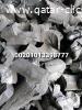 كميات فحم صومالي للتصدير