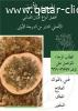 اللبان العُماني الحوجري الأخضر الأصلي