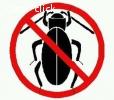 رش مبيدات حشريه يا قل الاسعار